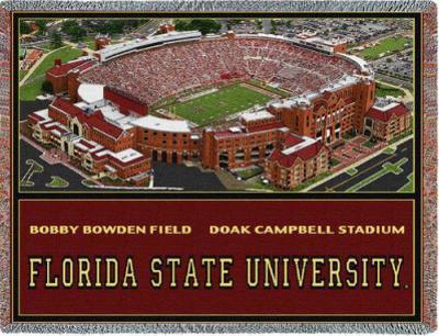 Florida State University, Stadium