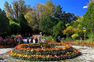 Flower Decoration in the Park of the Summer Residence of the 14th Dalai Lama