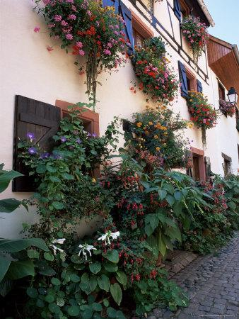 https://imgc.allpostersimages.com/img/posters/flower-filled-village-street-eguisheim-haut-rhin-alsace-france_u-L-P1TFVO0.jpg?p=0