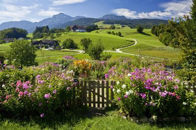 Flower Garden at Hoeglwoerth Monastery, Upper Bavaria, Bavaria, Germany