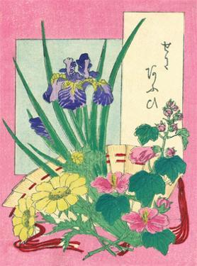 Flowers and Fan