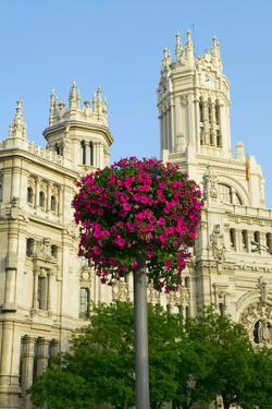 Flowers and Madrid Post Office, Madrid, Spain
