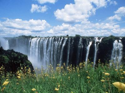 https://imgc.allpostersimages.com/img/posters/flowers-in-bloom-with-the-victoria-falls-behind-unesco-world-heritage-site-zambia-africa_u-L-P1TQ9F0.jpg?p=0