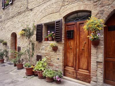 https://imgc.allpostersimages.com/img/posters/flowers-on-the-wall-tuscany-italy_u-L-Q1AHKRI0.jpg?artPerspective=n