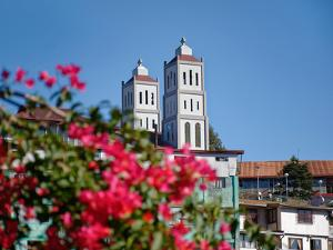 Flowers with church in the background, St. Vincent Ferrer Church, Baguio City, Luzon, Philippines