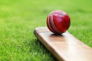 Cricket Ball Resting on a Cricket Bat on Green Grass of Cricket Pitch by Flynt