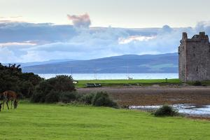 Red Deer in Front of Lochranza Castle on the Isle of Arran, Scotland by Flynt