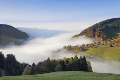 https://imgc.allpostersimages.com/img/posters/fog-on-the-wiedener-eck-black-forest-baden-wurttemberg-germany_u-L-Q1EY3NF0.jpg?artPerspective=n