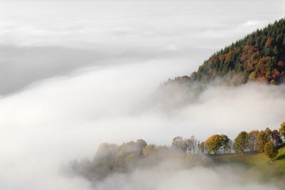https://imgc.allpostersimages.com/img/posters/fog-on-the-wiedener-eck-black-forest-baden-wurttemberg-germany_u-L-Q1EY67Z0.jpg?artPerspective=n