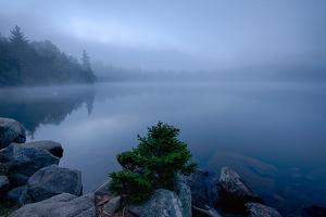 Fog over pond at sunrise, Copperas Pond, Adirondack Mountains State Park, New York State, USA