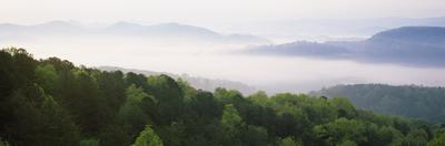 Fog over Valley, Great Smoky Mountains National Park, Tennessee, USA