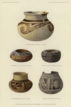 Food Bowls from Chevlon, Homolobi and Four-Mile, Arizona