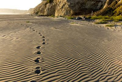 https://imgc.allpostersimages.com/img/posters/foot-prints-in-the-sand-patterns-on-the-beach-cape-blanco-sp-oregon_u-L-PU3HHH0.jpg?p=0