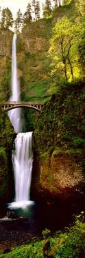 Footbridge in Front of a Waterfall, Multnomah Falls, Columbia River Gorge, Multnomah County, Ore...