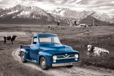 Ford- Classic 1954 Blue F-100