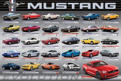 https://imgc.allpostersimages.com/img/posters/ford-mustang-50-years-of-evolution_u-L-F8SUZF0.jpg?artPerspective=n