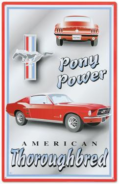 Ford Mustang Pony Power American Thoroughbred