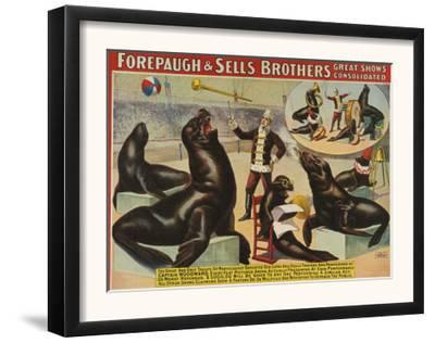 Forepaugh and Sella Brothers, Poster, 1900