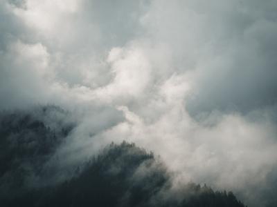 https://imgc.allpostersimages.com/img/posters/forest-isolation_u-L-F9JVG20.jpg?artPerspective=n