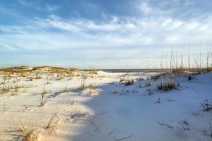 Footprints in the Sand Dunes at Dusk by forestpath