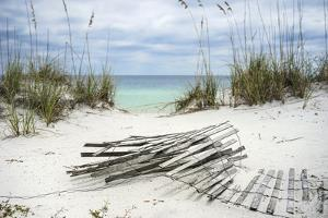 Sand Fence and Sea Oats at Florida Beach by forestpath