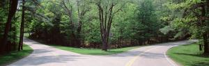 Fork in a Road Surrounded by Trees, Park Road, Letchworth State Park, New York State, USA
