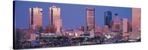 Fort Worth Skyline I