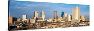 Fort Worth Skyline II
