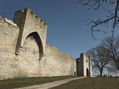 https://imgc.allpostersimages.com/img/posters/fortified-wall-and-entrance-to-the-medieval-town-of-visby-gotland-island-southern-sweden_u-L-PFNZYE0.jpg?p=0