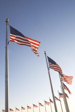 Usa, Washington Dc, Low Angle View on American Flags by Fotog