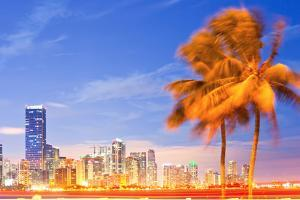 City of Miami Florida Night Skyline Palm Trees by Fotomak