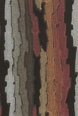 Bark Texture in Various Colors, Abstract Pattern by Found Image Press