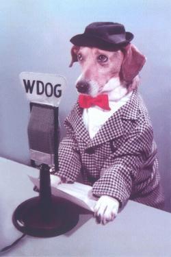 Doggie DJ by Found Image Press