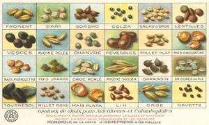 French Grain Chart by Found Image Press