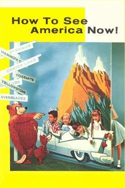 How to See America Now by Found Image Press