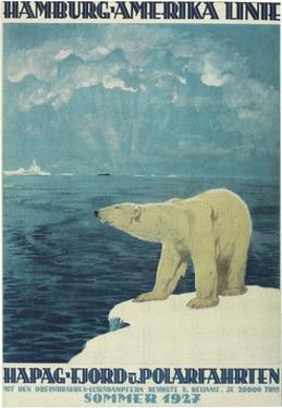 Polar Bear, Fjord Cruise Travel Poster by Found Image Press