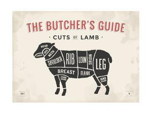 Cut of Meat Butcher Diagram - Lamb by foxysgraphic
