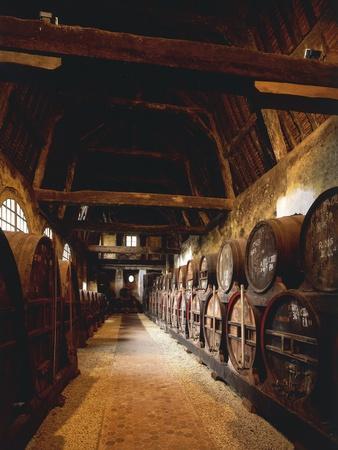 https://imgc.allpostersimages.com/img/posters/france-chateau-de-breuil-en-auge-ageing-calvados-barrels-in-old-stables_u-L-POPO1Y0.jpg?artPerspective=n