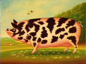 Old Spot Pig, 1998 by Frances Broomfield