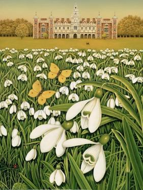 Snowdrop Day, Hatfield House, 1999 by Frances Broomfield