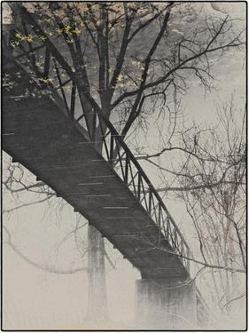 Bridge Reflection by Frances Gallogly