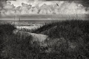 Dark Heavy Clouds Hang over the Dunes on a Beach on Hutchinson Island, Florida by Frances Gallogly
