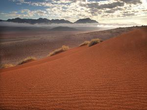 "Red Sand Dunes at Dawn Overlooking ""Fairy Circles"" in the Namibrand Desert, Namibia by Frances Gallogly"
