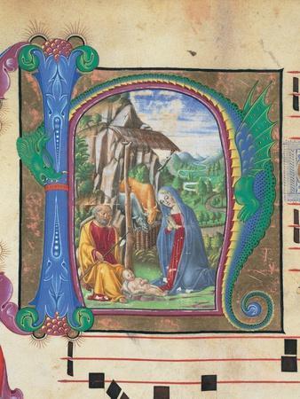 Nativity, Francesco di Giorgio Martini