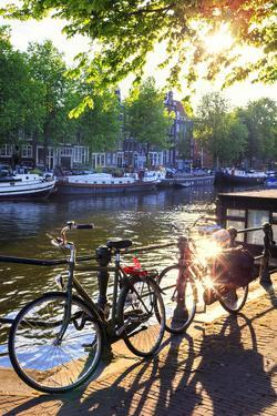 Netherlands, North Holland, Amsterdam by Francesco Iacobelli