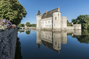 Castle and its moat, Sully-sur-Loire, UNESCO World Heritage Site, Loiret, Centre, France, Europe by Francesco Vaninetti