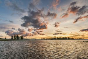 Fir trees and clouds reflecting on the suface of Hovsgol Lake at sunset, Hovsgol province, Mongolia by Francesco Vaninetti