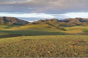 Hills and mountains, Bayandalai district, South Gobi province, Mongolia, Central Asia, Asia by Francesco Vaninetti
