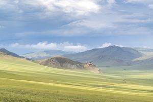 Landscape of the green Mongolian steppe under a gloomy sky, Ovorkhangai province, Mongolia, Central by Francesco Vaninetti