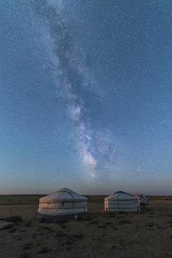 Mongolian traditional gers under the Milky Way, Ulziit, Middle Gobi province, Mongolia, Central Asi by Francesco Vaninetti